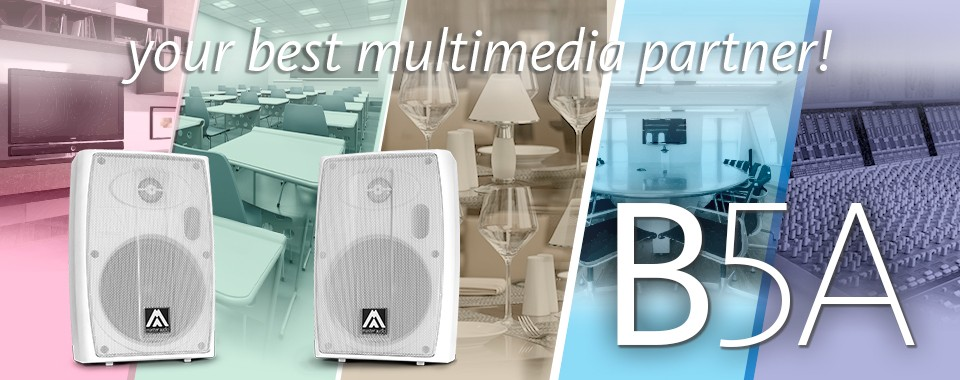 Активная двухполосная акустическая система Amate Audio B5A
