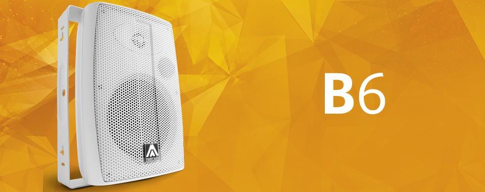 Акустическая система Amate Audio B6