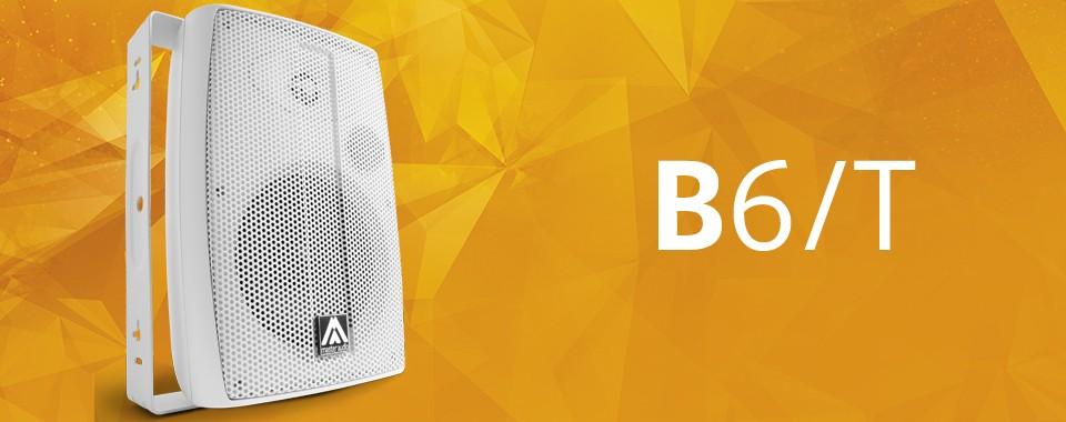 Акустическая система Amate Audio B6/T