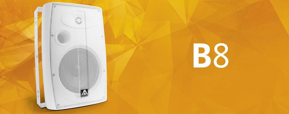 Акустическая система Amate Audio B8