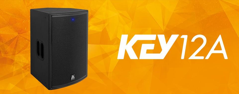 Акустическая система Amate Audio KEY12A