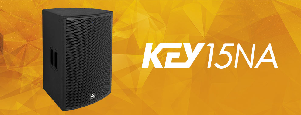 Акустическая система Amate Audio KEY15NA