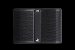 Сабвуфер Amate Audio N12WP